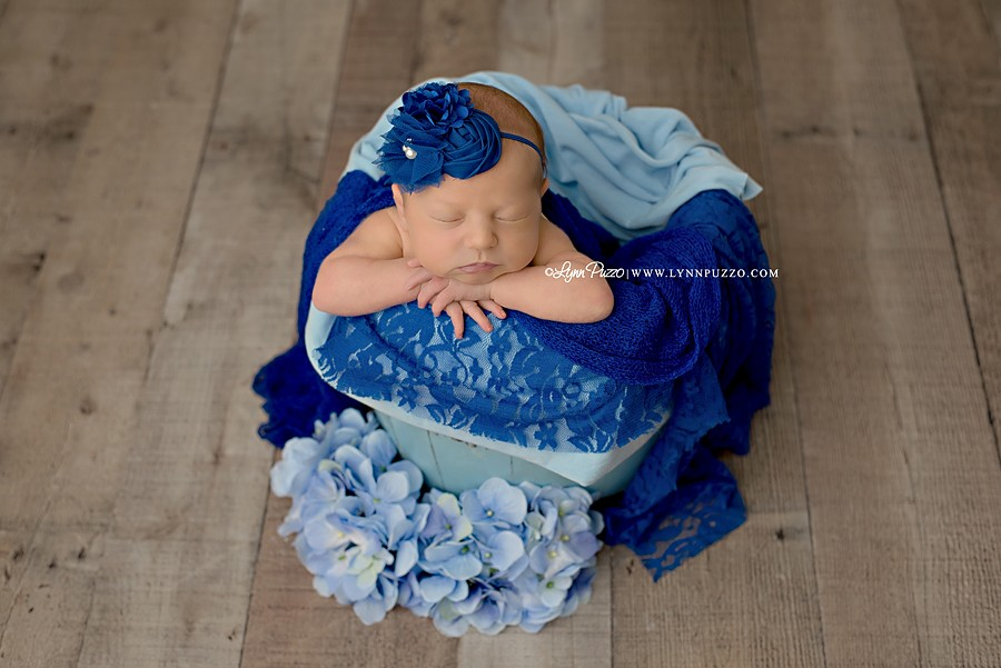 lynn puzzo photography, black hills newborn photographer, lynn puzzo reviews