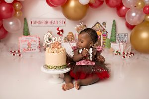 lynn puzzo photography, reviews, love, raves, kind words, buzz, gingerbread cake smash, cake smash photographer, atlanta cake smash photographer